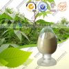 Factory Direct Supply Chinese Gall Extract Gallic Acid