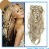 Blond Remy Human Hair Clip on Hair Extension (TT489)