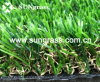 30mm Landscape/Garden Synthetic Lawn Carpet (SUNQ-HY00037)