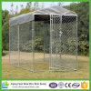 Dog Cages with Chain Link Fence