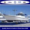 Bestyear Panga Boat of 40 Boat