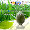 Factory Sypply Natural Barley Grass Powder