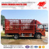 6 Meters Length Light Duty Livestock Lorry Truck