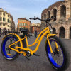26inch Fat Tire Electric Bike 500W Beach Ebike for Lady