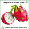 Fresh Pitaya Extract/ Dragon Fruit Powder Extract for Weight Loss