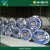 Galvanized Steel Coil with Ce Approved (GI)