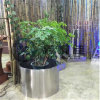 Customized Design of Decorative out Door/Hotal Stainless Steel Flower Pot
