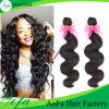 Fashion Loose Wave Hair Supplier Virgin Human Hair Wig