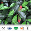 Cheap Outdoor Artificial Plastic IVY Privacy Artificial Plant
