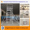 SDW-01 Double Width Climb Ladder Scaffolding