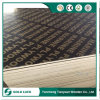 Black/Brown Film Faced Waterproof Plywood for Concrete Formwork