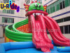 Gragon pool Inflatable Water Park