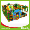 Indoor Playground Type and Plastic Playground Material Indoor Playground Equipment