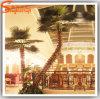 Professional Manufacturer Fiberglass Artificial Palm Tree
