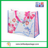 Promotion PP Woven Shopping Bag for Storage