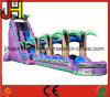 Giant Inflatable Slide, Inflatable Slip N Slide for Sale