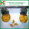 Canned Mandarin Orange (HSCMO-001A)