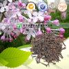 100% Pure Natural Herb Medicine Fructus Caryophylli