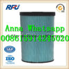 6I-0274 High Quality Air Filter Auto Parts for Caterpillar (6I-0274)