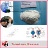99.7% Purity Raw Steroid Test Decanoate Testosterone Decanoate Powder