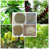 Organic Nitrogen Based Leaf Fertilizer Amino Acid Powder