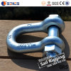 Alloy Pin Lifting Galvanized D Shackles