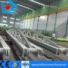Professional Steel Frame Member Fabrication for Prefab Building