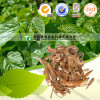 100% Pure Natural Herb Medicine Mulberry Bark