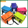 Outdoor Insulated Picnic Bag 6 Canscooler Bags (TP-CB371)