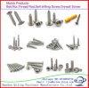 Security Screws with Countersunk Head