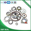 Different Type Oil Seal for Sale