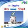 Forwarder Shipping From China to Leixoes Portugal by Sea