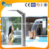 Outdoor SPA Pool Stainless Pool Waterfall