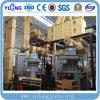 Yulong Brand Vertical Ring Die Biomass Wood Pellet Plant for Sale