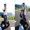 Fashionable Electric Mini Folding Bicycle with CE