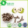 Guangzhou Wholesale Herbal Capsule Graviola Cancer