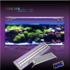 CREE LEDs with Meanwell Driver LED Aquarium Light (SI4BRR090)