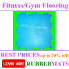 Tasteless Sports Speckled Rubber Flooring Gym Mat