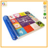 High Quality Wire-O Binding Colour Board Child Book