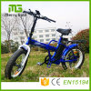 36V 250W 8fun Brand Ebike Folding Electric Bike