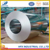 SGS Certified Galvanized Steel Coil of Hfx