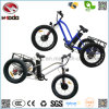 Fat Tiye Electric Tricycle for Beach Sport Bike with Lsd