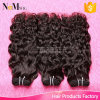Natural Wave Brazillian Virgin Human Water Wave Hair Bulk