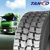 All-Steel Belt Truck Van Tyre