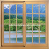 Modern Aluminum Sliding Window/Aluminum Grilled/ Beautiful Aluminum Window
