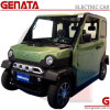 Mini Sightseeing Electric Car with 2 Seats (GEN-S)