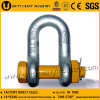 U. S Type G 2150 Bolt Safety Drop Forged Anchor Shackle