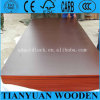 4*8ft Linyi Combi Core Black Film Faced Plywood