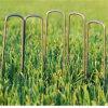 6 Inch Galvanized Landscape SOD Garden Staples