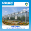 Hot Sale Glass Multi-Span Greenhouse for Flower